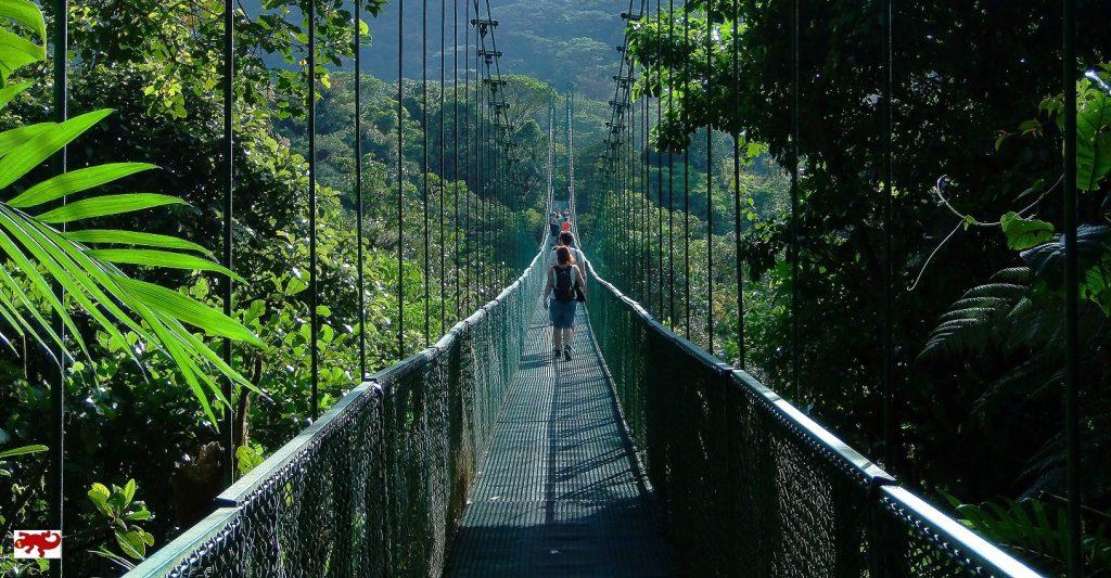 Hanging Bridges Monteverde Costa Rica
